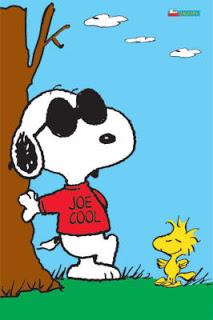 joe cool[1]
