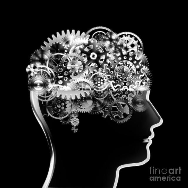 1-brain-design-by-cogs-and-gears-setsiri-silapasuwanchai