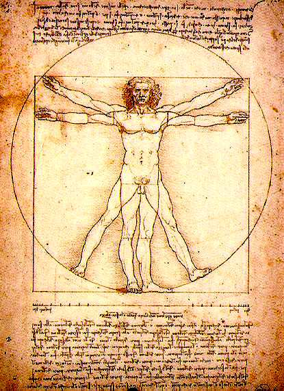 Vitruvian Man, DaVinci